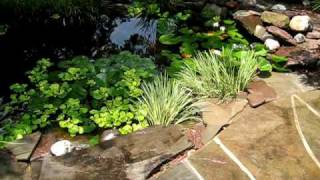Stone Patio and Pond with Waterfall by Creative Cascades