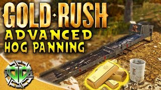 Gold Rush the Game :Advanced Hog Panning & 40 ounces of GOLD?! (PC Lets Play)