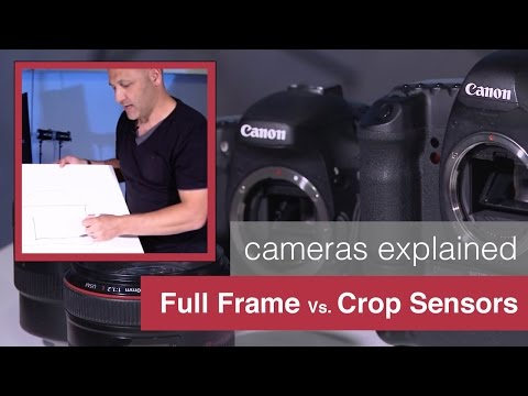 Full Frame Sensors vs Crop Sensor Cameras Explained by Karl Taylor!