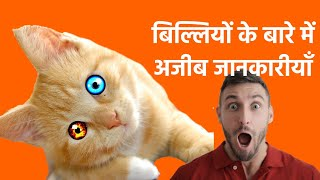 Top 30 Interesting Facts About CAT in Hindi | बिल्ली के बारे में जानकारी