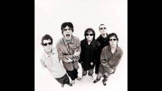 Watch Super Furry Animals No Sympathy video