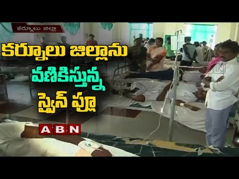 Swine flu Cases Rise In Kurnool District | CM Chandrababu Naidu Reviews Present Stutations