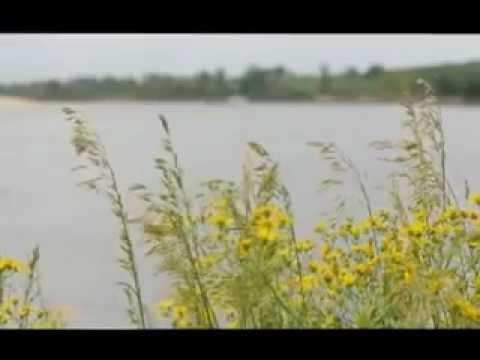 Ловля сазана на Нижней Волге Music Videos