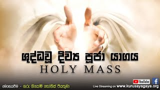 Morning Holy Mass - 29/10/2020