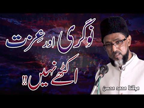 Naukari Aur Izat Myn Farq | Maulana Syed Muhammad Mohsin | 4K