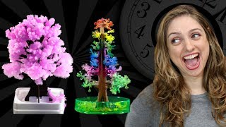A árvore de Natal de cristais #Timelapse 1