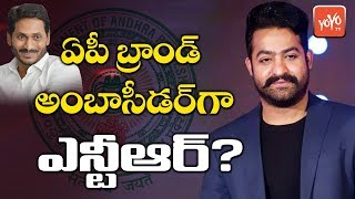 Jr NTR As AP Brand Ambassador? | AP CM YS Jagan Mohan Reddy Relation With NTR