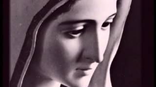 Breakfast | Objawienia Maryjne | Objawienia Maryjne