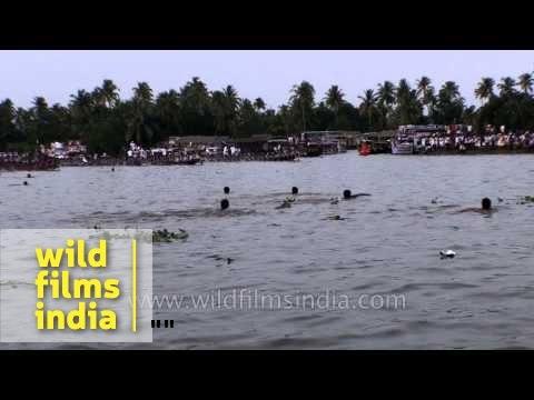 Oarsmen race during the biggest water regatta of Kerala : Nehru Trophy Boat Race