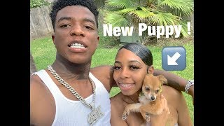I Suprised My Girlfriend With A Puppy!