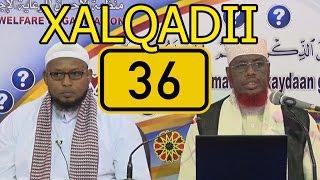 SU AALO & JAWAABO XALQADII 36 AAD || 23 - 2 - 2017 || SH. MAXAMED CABDI UMAL