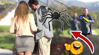GIANT SPIDER SCARE PRANK  - AWESOME REACTIONS