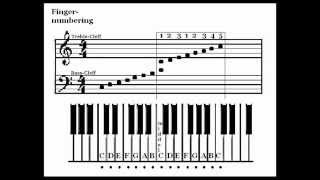 How To Read Sheet Music The Basics VideoMp4Mp3.Com