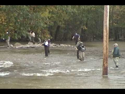 Salmon River Pulaski NY October 1, 2010 Flood Altmar North Lot