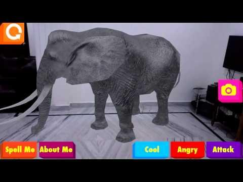 4D Animals - African Wildlife