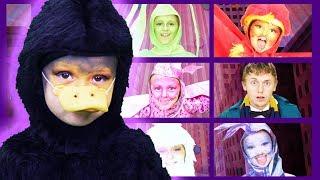 Fantastic Beasts Finger Family | Live | Finger Family Songs