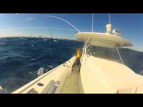 Kite Fishing- Miami 42' Yellowfin