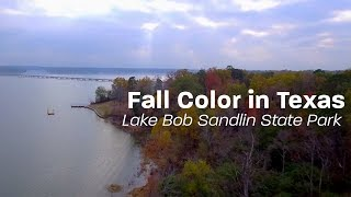 LOTS of Fall Foliage at Lake Bob Sandlin State Park
