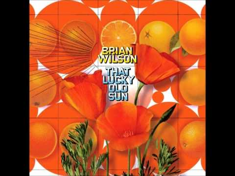 Brian Wilson - Forever She&#039;ll Be My Surfer Girl