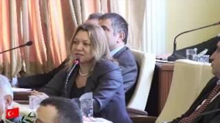 Zeytinburnu Belediye Meclisi Ocak Ayı 1  Bilişim 2013