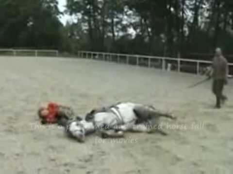 New! Horse falls & mishaps #3