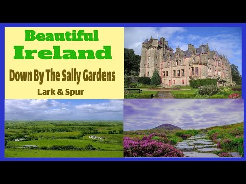 Down By The Sally Gardens Irish songs Celtic music Ireland folk traditional Ireland Music Videos