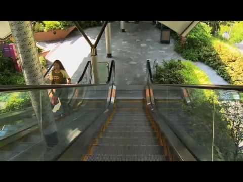 Singapore Tourism Trailer