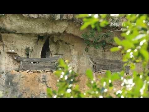Net17 - Kedekatan Budaya Dengan Tana Toraja video