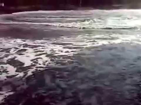 Pantai Grajagan - Banyuwangi video
