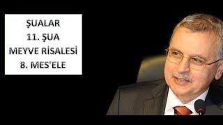Prof. Dr. Ahmet Akgündüz - Şualar - 11. Şua - Meyve Risalesi - 8. Mes'ele