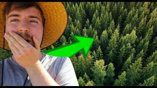 Mr Beasts plants 20'000'000 TREES - LWIAY #0078