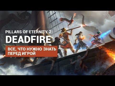 Что нужно знать о Pillars of Eternity 2 Deadfire