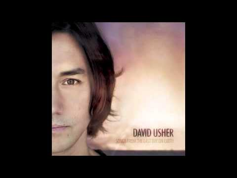 David Usher - In This Light