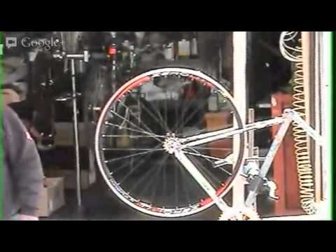 bmfu-live-42113-test-bikemanforu-reality-show-saturday-circus.html
