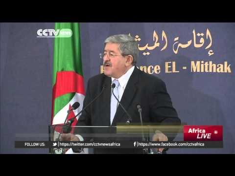 Algerian government lays out proposed draft constitution