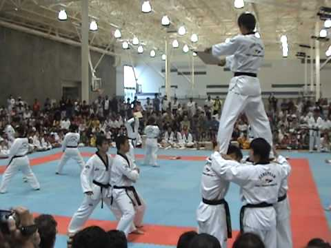 WTF Taekwondo Demo Team Frisco 2009 Image 1
