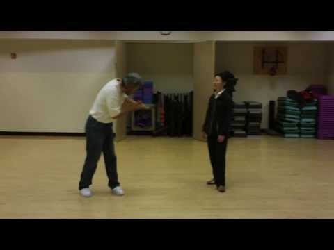Tai Chi Push Hands Basic Training, Part 5 Image 1
