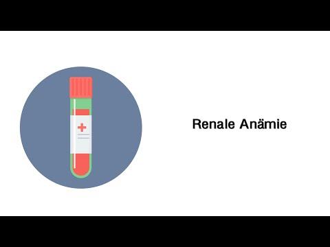 Renale Anämie - Erkrankungen des Blutes