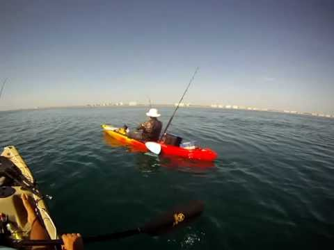 Fishing for Bonita and Sharks From Kayaks