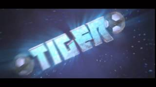 Intro | TigerGFX