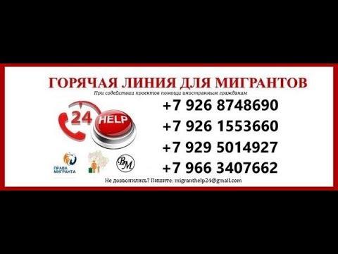 Горячая линия фмс россии
