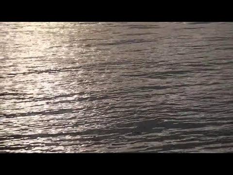Travel Guide: Costa Rica Ferry - Paquera to Puntarenas - Nicoya Peninsula