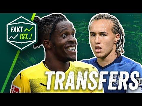 BVB: Zaha zu Dortmund, Laxalt zu Schalke 04? Fakt ist..! Transfer Spezial Sommerpause 2018