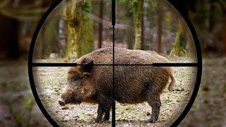 ПРИКОЛ! На охоте   на охоте!! FUN ! On the hunt for hunting !!