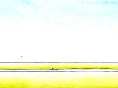 birdy- dennis furrer