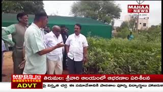 Jupally Krishna Rao Inaugurates Nursery At Dulapally