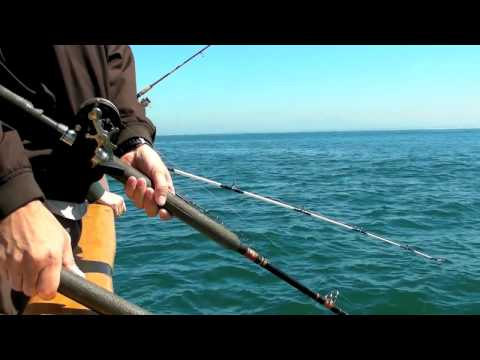 San Diego salt water fishing
