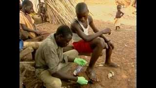 Dracunculiasis (guinea-worm disease). Heightened surveillance: the key to eradication
