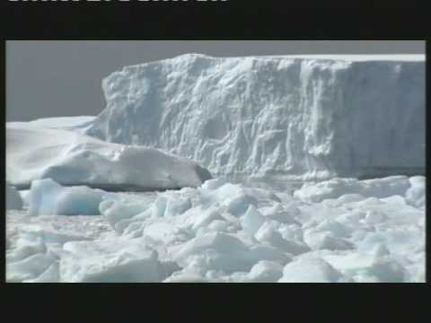 GLOBAL WARNING - Antarctica Ice Melting Fast  Global Warming Potential Sea Level Rise of 75 Metres
