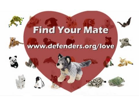 Find Your Mate AND Save Something Wild!